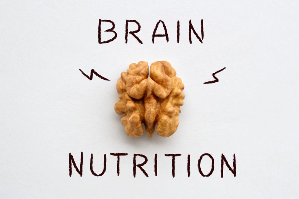 بهترین مواد مغزی برای مغز