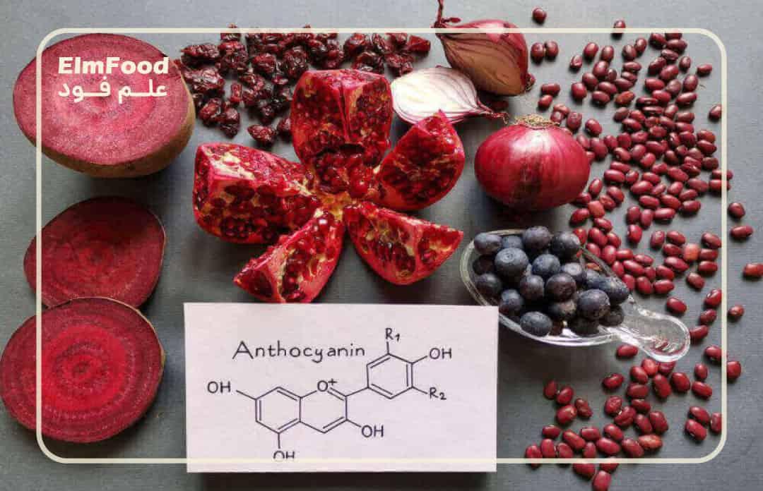 رنگدانه های طبیعی خوراکی | مواد غذایی سرشار از آنتوسیانین