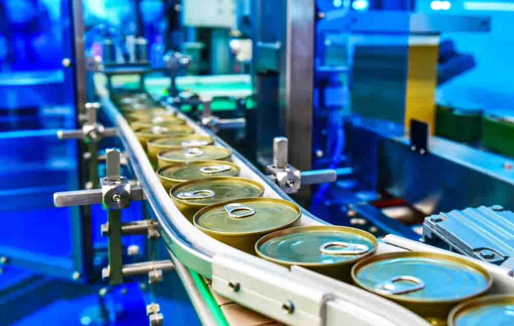 خط تولید کنسرو لوبیا چیتی