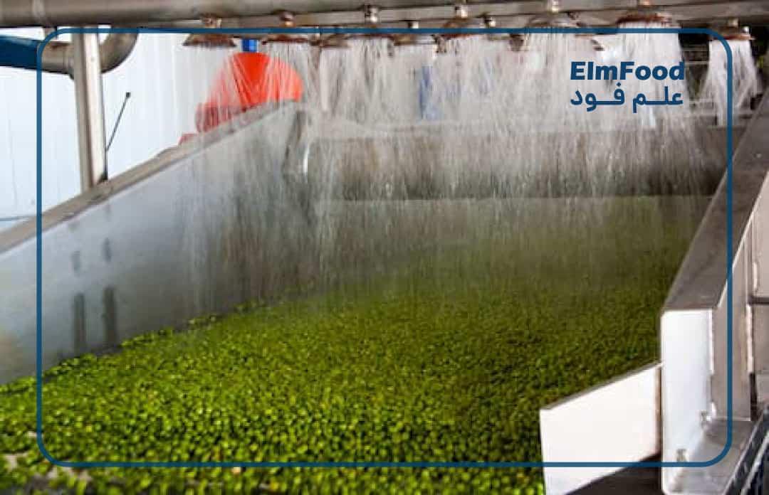 شست و شو در خط تولید کنسرو نخود سبز