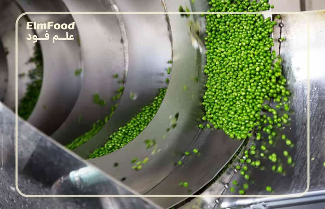 راه اندازی خط تولید کنسرو نخود فرنگی