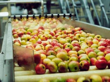 خط تولید آب سیب
