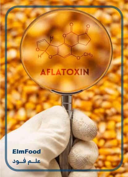 بررسی آفلاتوکسین در شیر
