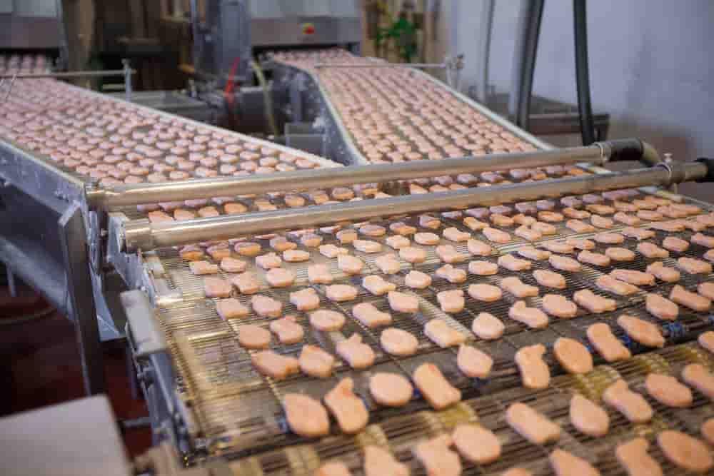 کارخانه تولید ناگت مرغ