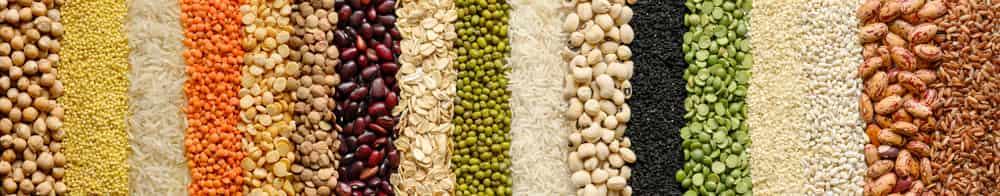 مواد غذایی حاوی بازدارنده های پروتئاز
