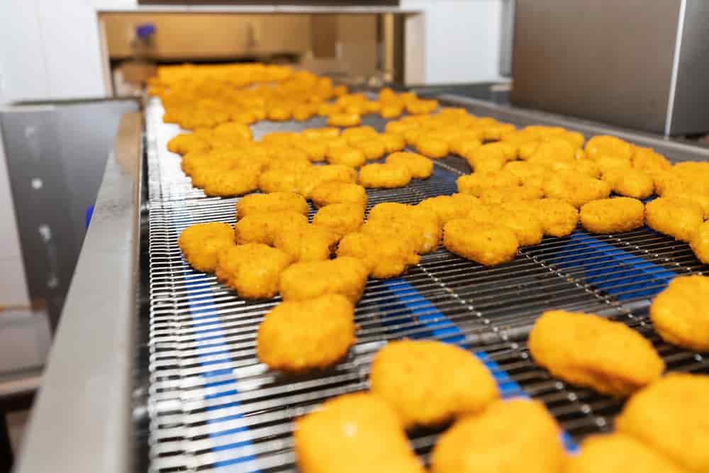 فرایند تولید ناگت مرغ در کارخانه