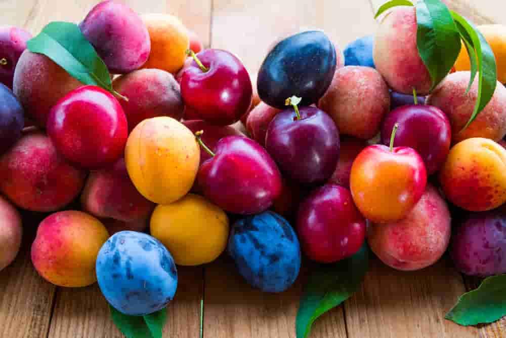 سم سیانید در هسته میوه ها