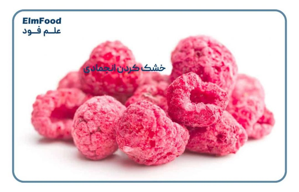 خشک کردن انجمادی میوه