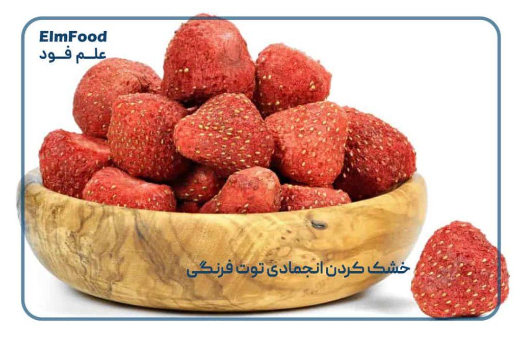 خشک کردن انجمادی توت فرنگی