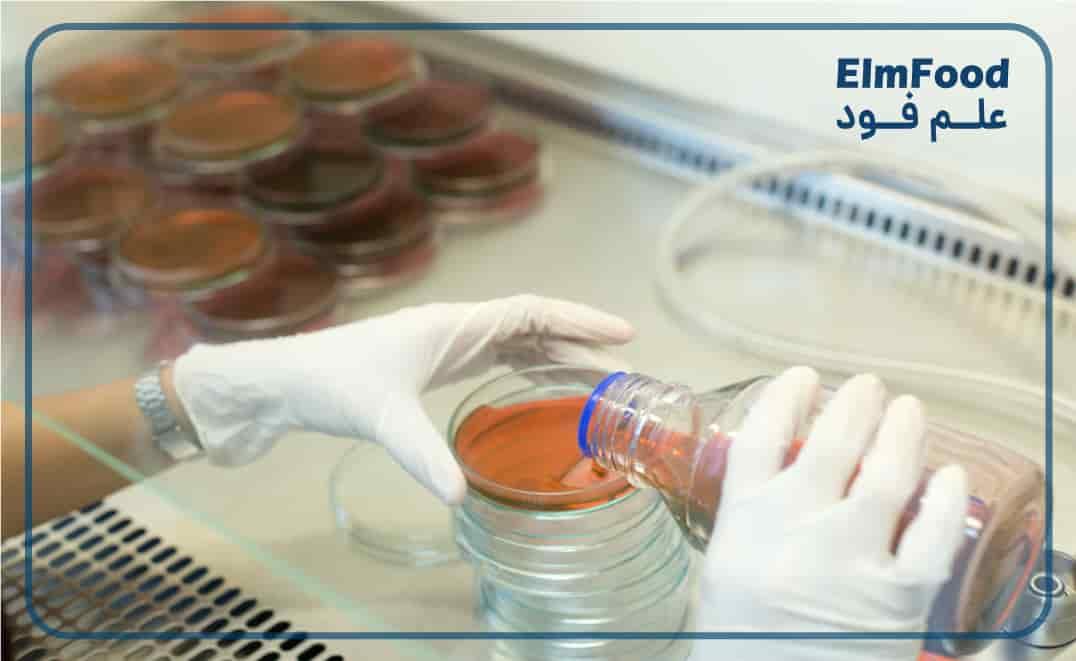 مراحل شمارش میکروارگانیسم ها در مواد غذایی