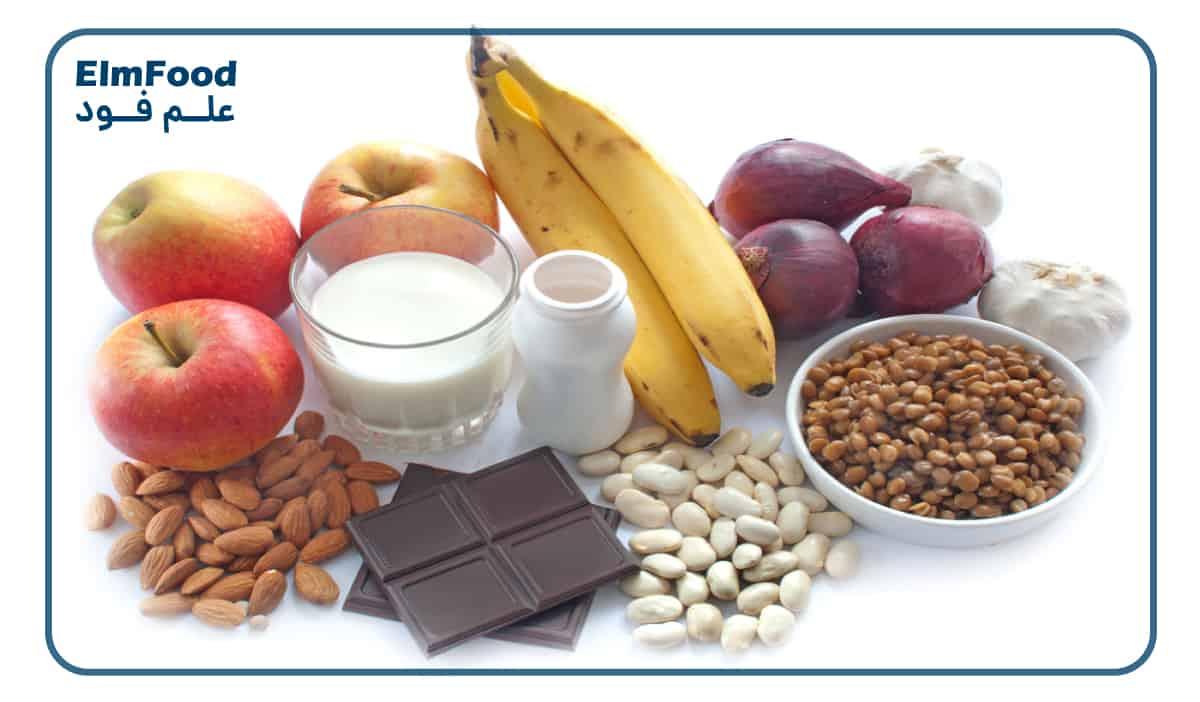 پروبیوتیک ها در چه مواد غذایی هستند