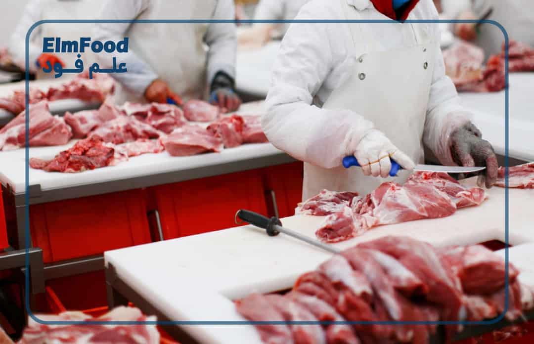 مراحل خط تولید بسته بندی گوشت قرمز