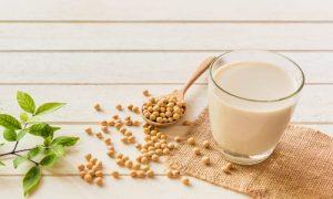 تکنولوژی تولید شیرسویا